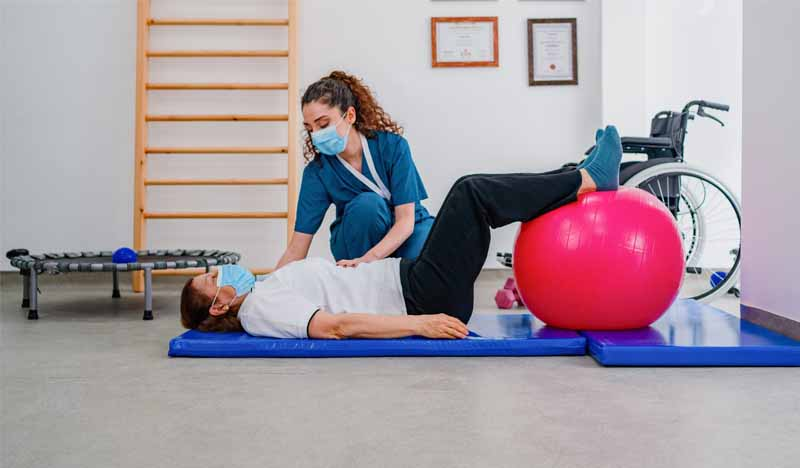 master fisioterapia manual uax